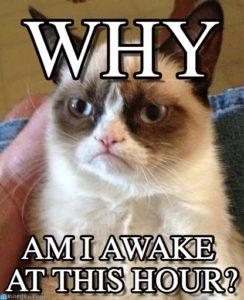 grumpy_cat_meme-www.memegen.com